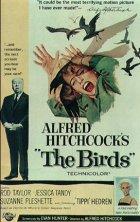 Die Vögel - Plakat zum Film