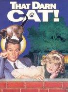 Alles für die Katz - Plakat zum Film