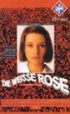 Die weiße Rose - Plakat zum Film