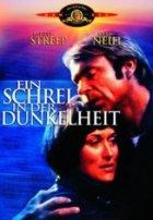 Ein Schrei in der Dunkelheit - Plakat zum Film
