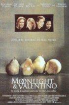Moonlight And Valentino - Plakat zum Film