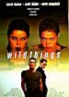 Wild Things - Plakat zum Film