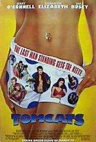 Tomcats - Plakat zum Film