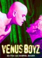 Venus Boyz - Plakat zum Film