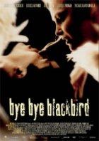 Bye Bye Blackbird - Plakat zum Film