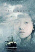 True North - Plakat zum Film