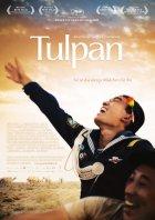 Tulpan - Plakat zum Film