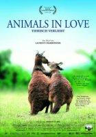 Animals In Love - Plakat zum Film