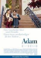 Adam - Eine Geschichte über zwei Fremde. Einer etwas merkwürdiger als der andere - Plakat zum Film