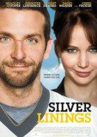 Silver Linings - Plakat zum Film