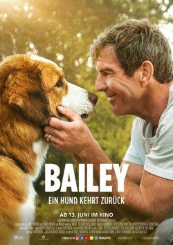 Bailey - Ein Hund kehrt zurück - Plakat zum Film