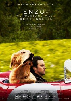 Enzo und die wundersame Welt der Menschen - Plakat zum Film