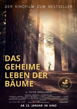 Das geheime Leben der Bäume  - Plakat zum Film